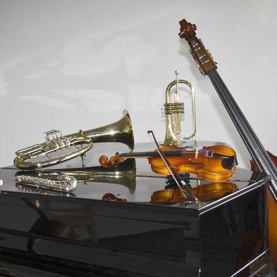 Instrumente_auf_Flugel
